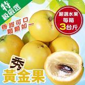 【果之蔬-全省免運】台灣黃金果3斤±10%(含箱重)