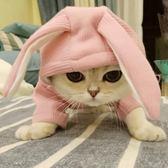 雙十二狂歡韓版秋冬季寵物貓狗連帽加厚泰迪比熊狗狗大學T小狗狗冬天衣服