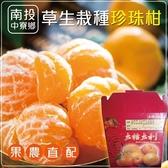 【果農直配】草生栽種珍珠柑(5斤±10%含箱重/箱)