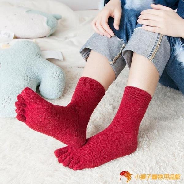 羊毛五指襪純棉中筒羊毛襪冬季吸汗運動分趾襪【小獅子】