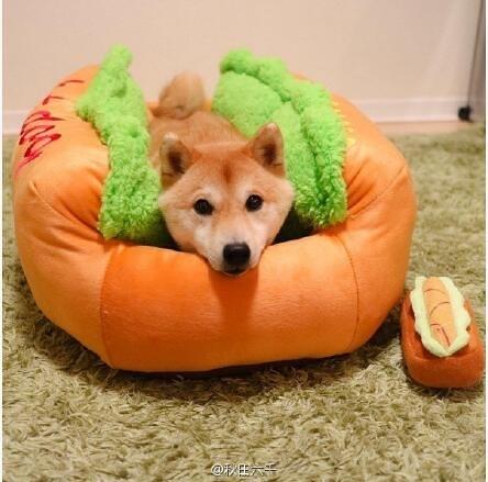 日本秋田六千hot dog熱狗可拆洗寵物狗窩小貓窩大貴賓狗柴犬床墊 風尚