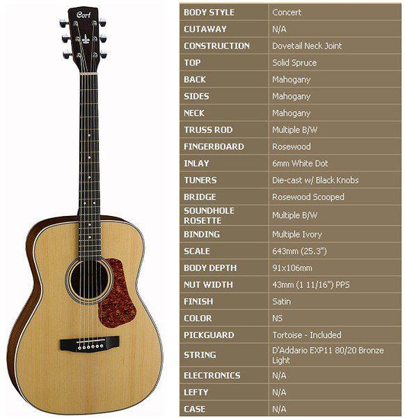 韓國品牌CORT L100C 單板民謠吉他【Cort木吉他專賣店/L-100C】