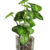 仿真花 如一花開擺件假四葉草小盆栽家居客廳桌面假花裝飾綠植盆景 卡菲婭