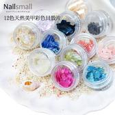 彩色超薄貝殼片12入 鮑魚貝殼片 鲍鱼碎片 貝殼粉 美甲材料批發 Nails Mall