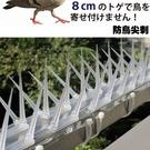 陽臺室外防鳥防鴿子驅鳥驅趕麻雀防鳥刺防鳥片塑料防鳥針 設計師