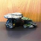 烏龜島 (灰/紅 小) 【飾品】造景裝飾 魚缸擺設 水族飾品 漂亮 魚事職人