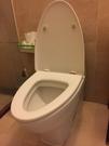 【麗室衛浴】 全新 德國 Villeroy & Boch 原廠 單體馬桶 6689專用馬桶蓋