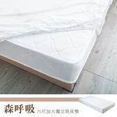 【dayneeds】卡莉絲名床6尺加大雙人獨立筒床墊3D立體透氣設計