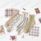 韓國ins潮甜美可愛女網眼鏤空薄棉襪春夏透氣網紗學院風中筒襪