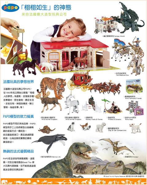 【Good Toy】法國 PAPO 50020 野生動物 印度豹 Cheetah