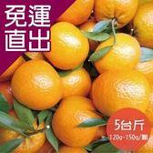 杰氏優果. 桶柑5台斤(23號)(120g-150g/顆)【免運直出】