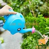 澆水壺澆花家用室內花灑玩具小型加厚園藝灑水噴壺【慢客生活】