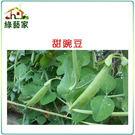 【綠藝家】大包裝E03.甜豌豆 (嫩豆)...