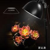 攝影燈 拍照攝像補光燈廣口攝影燈具套裝服裝人像主播拍攝器材 CP2326【野之旅】