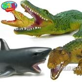 動物模型鱷魚玩具仿真動物鱷魚模型塑膠鯊魚玩具海洋動物玩具兒童