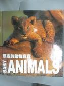 【書寶二手書T8/動植物_KCY】頑皮的動物寶寶_ANGELA SERENA ILDOS
