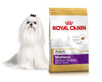 *~寵物FUN城市~*法國皇家 PRM24馬爾濟斯成犬【1.5KG】(瑪爾濟斯,老犬,狗飼料,犬糧)