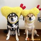 小狗狗生日帽子寵物中小型搞怪飾品貓咪裝扮頭天婦羅【小獅子】