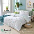 【BEST寢飾】天絲床包兩用被四件式 加大6x6.2尺 瓢蟲的愛 100%頂級天絲 萊賽爾 附正天絲吊牌