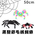 假蜘蛛 萬聖節 毛絨蜘蛛 毛蜘蛛(50C...