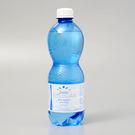 義大利【亞莉佳】氣泡礦泉水 500ml(賞味期限:2019.12.18)
