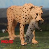 【Mojo Fun 動物星球頻道 獨家授權】 非洲獵豹(母子) 387167