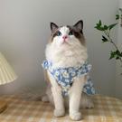 春夏薄款韓版IG寵物狗狗貓咪衣服夏季防掉毛布偶藍白無袖公主裙【小狮子】