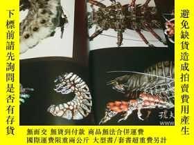 二手書博民逛書店STEAMPUNK罕見ORIENTAL LABORATORY Vol.1 book from japan japa