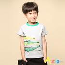 三隻鱷魚印花,圓領配色短袖T恤
