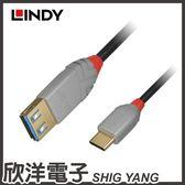 LINDY 林帝 ANTHRA LINE USB 3.1 GEN 1 TYPE-C/公 TO TYPE-A/母 OTG傳輸線 (36895) 0.15M/公尺
