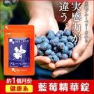 藍莓精華錠 B群添加 視覺維持 健康補給...