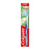 高露潔潔淨護齦牙刷 x12入團購組【康是美】