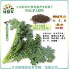 【綠藝家】大包裝A22.鳳仙羽衣芥藍種子80克(約2萬顆)