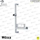 CAESAR 凱薩衛浴 滑桿WG-113 水電DIY  淋浴龍頭專用滑桿