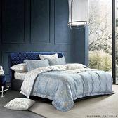 天絲四件式床包兩用被(5x6.2尺)-墨竹-生活工場