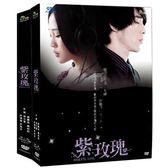 台劇 - 首降促銷-紫玫瑰DVD (全13集/二盒裝) 梁文音/黃騰浩