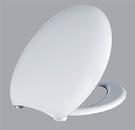 【麗室衛浴】國產  抗菌  馬桶蓋 SA9559 無緩降 品質好非一般市售HCG塑料能比  A-455-4