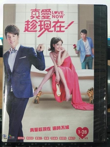 挖寶二手片-S07-040-正版DVD-台劇【真愛趁現在 全72集11碟】-胡宇威 陳庭妮(直購價)