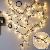 LED小彩燈房間臥室裝飾樹枝藤條彩燈閃燈串燈圓球布置婚慶 XW3773【極致男人】