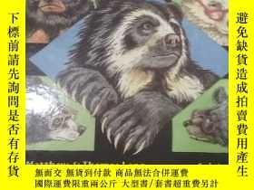二手書博民逛書店And罕見bear can wear glassesY29022