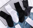 襪子女中筒襪夏天薄款長襪