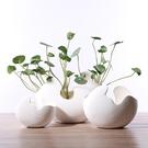 創意北歐風ins陶瓷花瓶簡約現代擺件客廳干花插花餐桌家居裝飾品