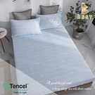 【BEST寢飾】天絲床包二件組 單人3.5x6.2尺 度假 100%頂級天絲 萊賽爾 附正天絲吊牌 床單