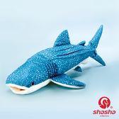 鯨鯊毛絨玩具 可愛鯨鯊公仔 超柔鯨鯊仿真動物 鯨鯊海洋動物歐亞時尚
