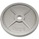 奧林匹克鑄鐵槓片20KG(二入)/重量片/烤漆槓片/重量訓練/