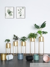 北歐鐵藝花架子金色輕奢歐式單個客廳室內落地式綠蘿金屬花盆栽架 牛轉好運到 YTL