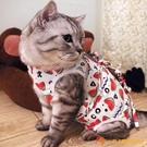 貓咪手術服母貓絕育衣術后防舔防咬幼貓斷奶服【小獅子】