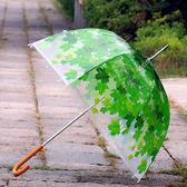 透明雨傘透明傘長柄傘自動創意雨傘