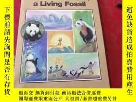 二手書博民逛書店the罕見giant panda,a living fossil