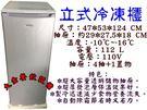 112L立式冰櫃/自動除霜冷凍櫃/風冷無...